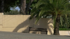 Wooden bench under a palm tree on a street in Sainte-Maxime, France Stock Footage