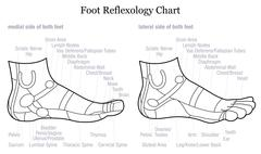 Foot Reflexology Profile Side Description Outline - stock illustration
