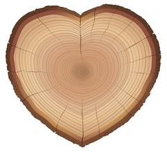 Love Nature Wood Rings Heart Shaped Symbol - stock illustration