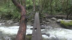 Crossing a dangeorus bridge in a tropical rain forest Stock Footage