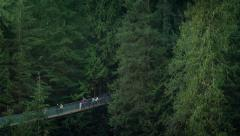 People On Walkway High In The Trees Stock Footage