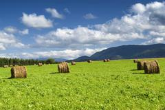 Country landscape in Midi-Pyrenees (France) - stock photo