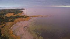 Aerial shot of the sea of Purekkari cape Stock Footage