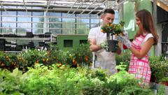 Young gardeners tending a plant in greenhouse - stock footage