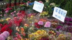 Colorful flower bouquets for sale in Hong Kong, price tags in Chinese script Stock Footage