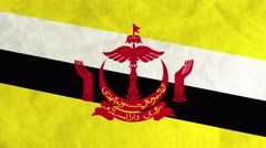 Bruneian flag waving in the wind (full frame footage) Stock Footage