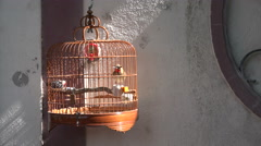 Beams of sunlight fall on the classic cage of a bird in Hong Kong Stock Footage
