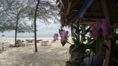 Cafe on a tropical beach in Thailand, oceanfront patio with orchids, sunny day Stock Footage