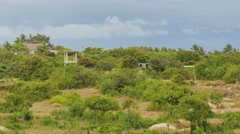 Kenya coastal bushlands - backplate 01 - stock footage