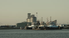 Tugboats in Harbour Stock Footage