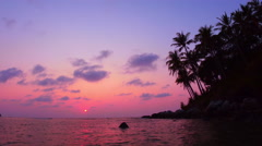 Vivid sunset on tropical sea coast with silhouettes of coconut palm trees. 4K Stock Footage