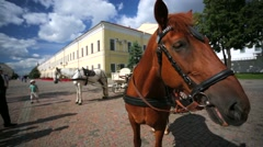 Stock Video Footage of Kazan Kremlin, horses with coach for tourist ride.
