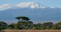 Mount Kilimanjaro Arkistovideo