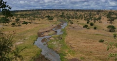 Tarangire River Panorama - stock footage