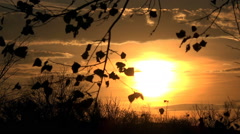 Stock Video Footage of Autumn Sunset Interval Shooting