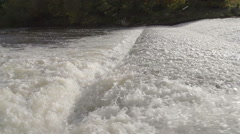 Salmon Jumping Over Weir In River Rapids Stock Footage