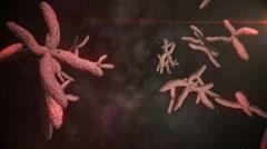 Animation of moving chromosomes - stock footage