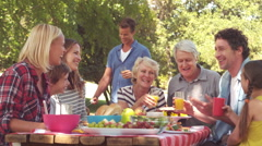 Happy family having a picnic Stock Footage