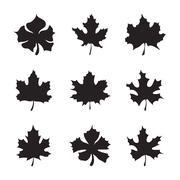 Set of nine Maple-leaf silhouette vector Stock Illustration