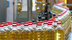 Sunflower oil on production line - stock footage