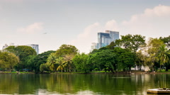 sunny day bangkok city lumpini park pond panorama 4k time lapse thailand - stock footage