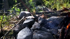 Burning camping fire beside the river in sunny day. Stock Footage
