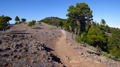 Hiker in the Mountains of La Palma Canary Islands - stock footage