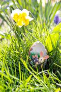 Toy easter bunny in an eggshell Stock Photos