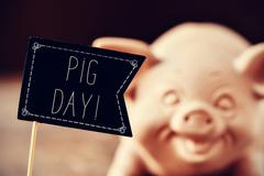 pig and text pig day - stock photo
