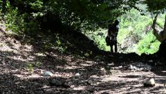 Roman soldier on a slope uphill run to hide in the woods and escape pursuers Stock Footage