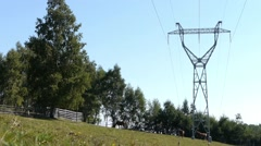 Herd of horses graze on a pasture grass under high tension poles - stock footage