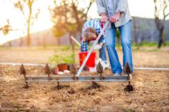 Senior woman and man plowing and planting seeds, garden - stock photo