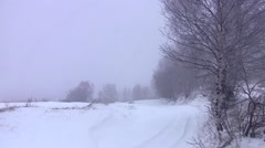 Birch in the wind at a roadside deserted, covered in snow of winter cold Stock Footage