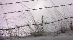 Dried herbs windy cold of winter and barbed wire fence - stock footage