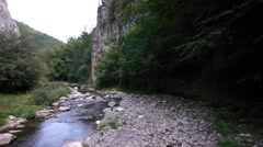 Mountain river through steep rock walls, covered with a dense forest Stock Footage