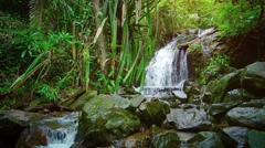 Tropical Waterfall in a Southeast Asian Rainforest Wilderness Stock Footage