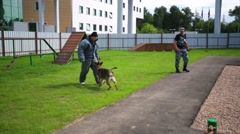 Police officer dog trainer and his obedient working  dog. - stock footage