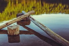 Stillness, bare tree trunks fallen in the water Stock Photos