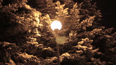 Winter park in the evening covered with snow with a row of lamps Stock Footage