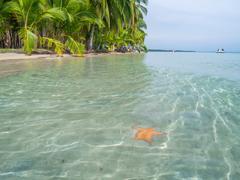Beach in bocas del toro Stock Photos