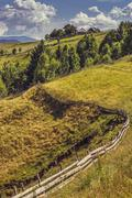 Summer country landscape - stock photo