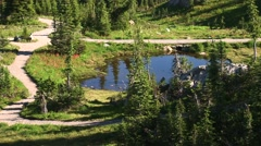 Peaceful mountain meadow pond in Revelstoke National Park, BC, Canada. Stock Footage