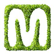 Letter M made of green leaves - stock photo