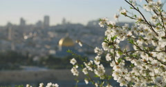The temple mount in the old city of Jerusalem - stock footage