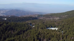Green pine trees, rolling hills, aerial flight over the natural landscapes . Stock Footage