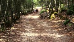 Couple walking together and holding hands in a path. Stock Footage
