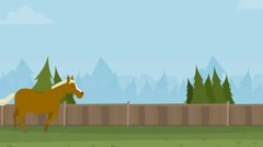 Horse galloping across the field, Stock Footage