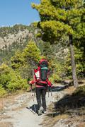 Yount femela trekker on her way through mountain forest. Stock Photos