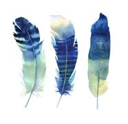 Hand drawn watercolor feather set. Boho style. illustration isol Stock Illustration