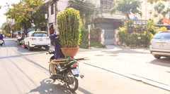 Man Drives Chrysanthemums on Scooter along Street in Vietnam - stock footage